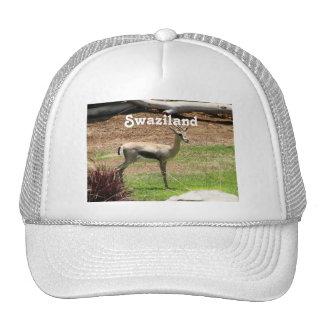 Swaziland Gazelle Hat