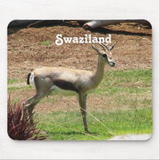 Swaziland Gazelle Mouse Pads
