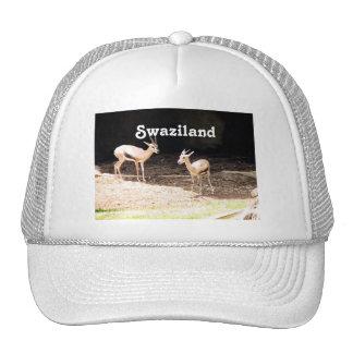 Swaziland Mesh Hats