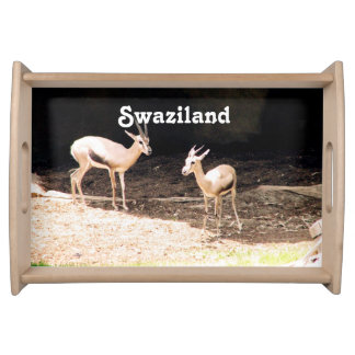 Swaziland Serving Platter