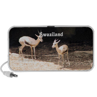 Swaziland iPhone Speakers