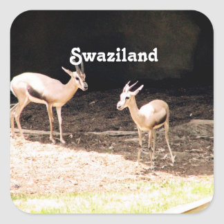 Swaziland Square Stickers