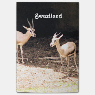 Swaziland Post-it® Notes