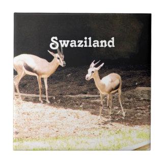 Swaziland Tile