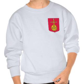 Swedish Air Force F2 Pull Over Sweatshirts