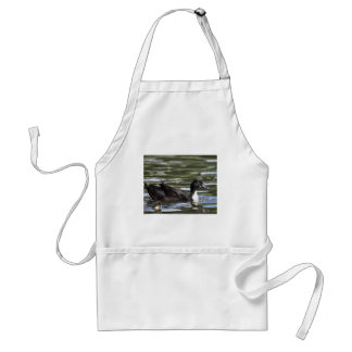 Swedish Blue Duck with Duckling Apron