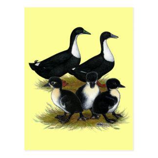 Swedish Duck Family Postcard