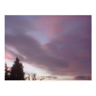 Swedish Sky At Sunrise Postcard