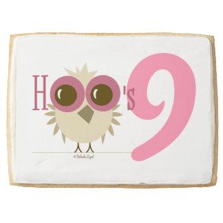 Sweet 9th Birthday Cookies Owl Cake Girl 9 Pink