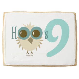 Sweet 9th Birthday Cookies Owl Cake Girl 9 Teal