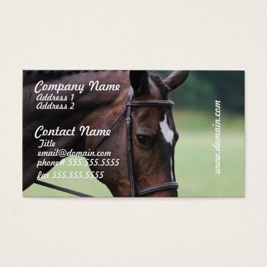 Sweet Arabian Horse Business Cards