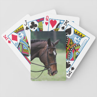 Sweet Arabian Horse Deck of Cards
