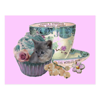 Sweet As a Cupcake II kitten postcard