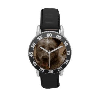 Sweet Australian Cattle Dog Wristwatches