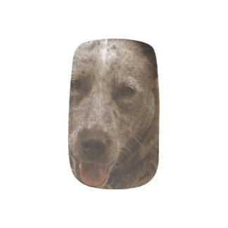 Sweet Australian Cattle Dog Fingernail Transfer