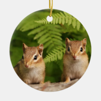 Sweet Baby Chipmunk Siblings Round Ceramic Decoration