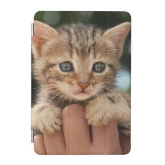 Sweet Baby Kitten iPad Mini Cover