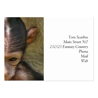 sweet baby monkey business cards