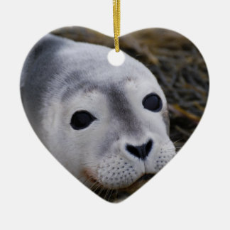 Sweet Baby Seal Ornament