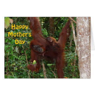Sweet Baby with Mother Happy Mother s Day Greeting Card