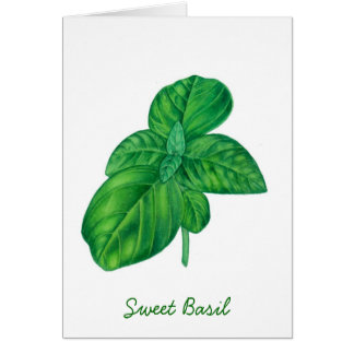 Sweet basil card