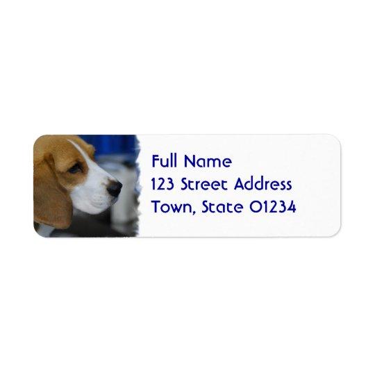 Sweet Beagle Return Address Label