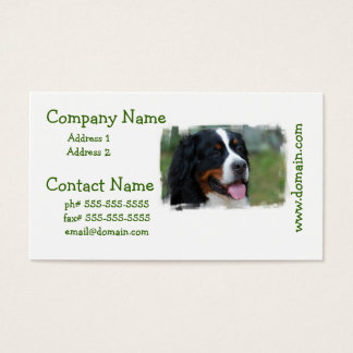 Sweet Bernese Business Cards