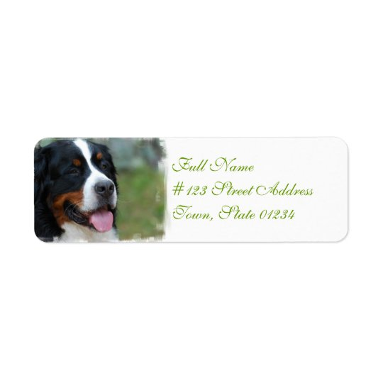 Sweet Bernese Mailing Labels
