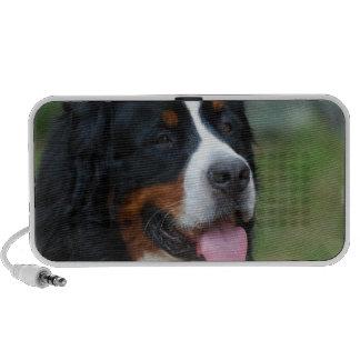 Sweet Bernese Portable Speakers