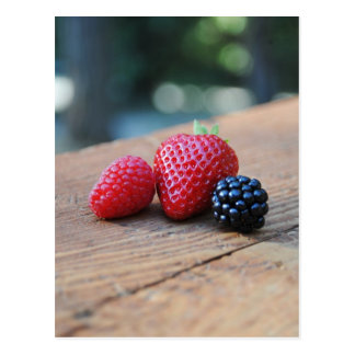 Sweet Berries Postcard