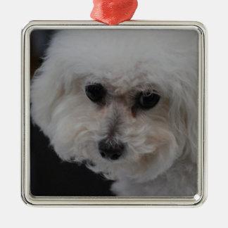 Sweet Bichon Frise Christmas Ornament