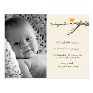 Sweet Birdie Baby Birth Announcement Postcard