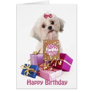 Funny Birthday Invitations as luxury invitation sample