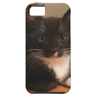 Sweet black and white Kitten looking at YOU iPhone 5 Cover