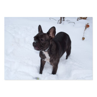 Sweet Black French Bulldog Likes Snow Pack Of Chubby Business Cards