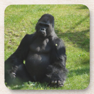 Sweet Black Monkey Gorilla Coaster