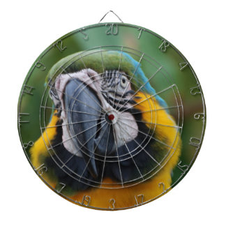 Sweet Blue and Gold Macaw Dartboard