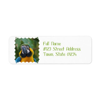 Sweet Blue and Gold Macaw Return Address Label