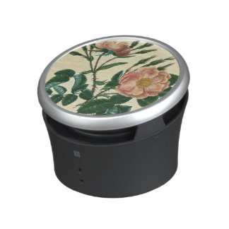 Sweet Briar Rose Speaker