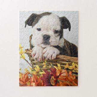 Sweet Bulldog Puppy Jigsaw Puzzle