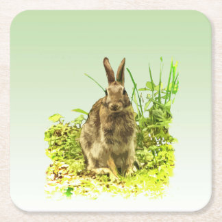 Sweet Bunny Rabbit in Grass Paper Coasters