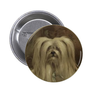 Sweet Button With Hairy Little Vintage Puppy