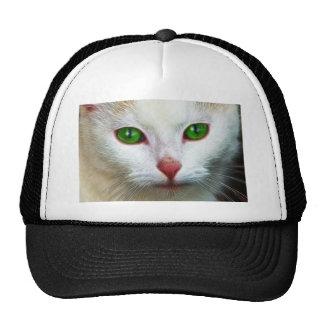 Sweet Cat Trucker Hats