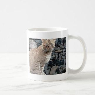 Sweet Cat Mug