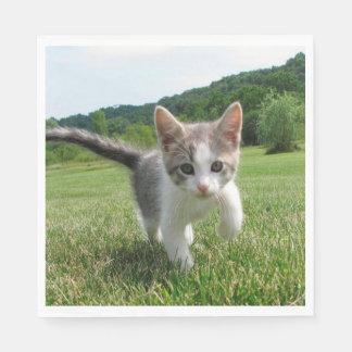 Sweet Cat Paper Napkins