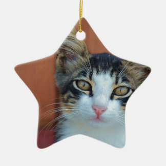 Sweet Cat with enchanting eyes Ceramic Star Decoration