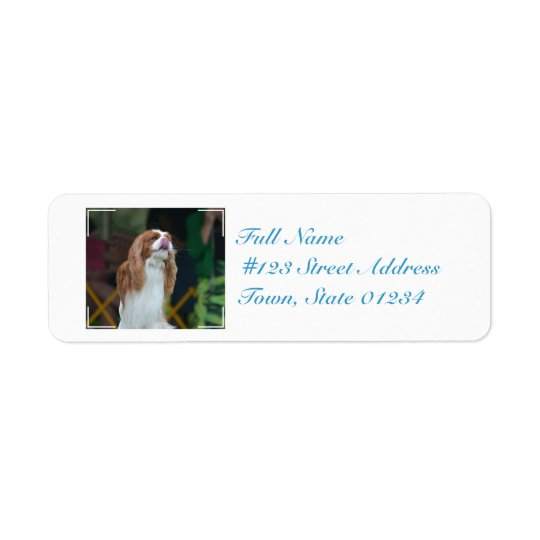 Sweet Cavalier King Charles Spaniel Return Address Label