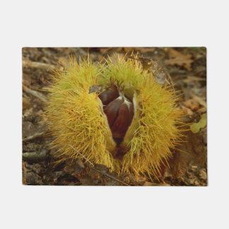 Sweet Chestnut Door Mat