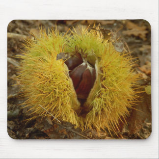 Sweet Chestnut Mouse Mat