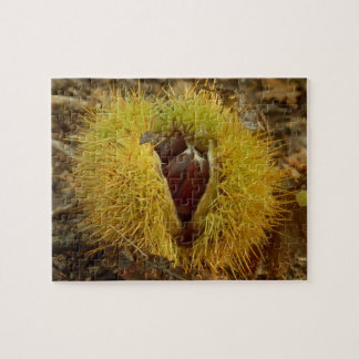 Sweet Chestnut Photo Puzzle with Gift Box